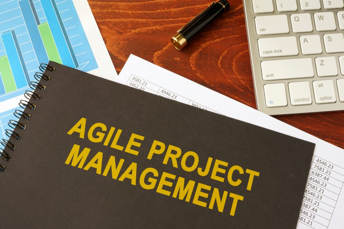 Project Agility and Managing Your Client