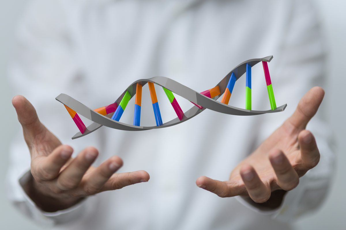 The Startup DNA – Startups, Leadership and Culture Change